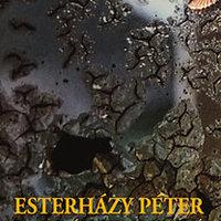 Az első Esterházy-könyv, amit nem akartam elolvasni