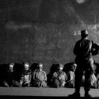 Börtön, maffia, Chomsky-kifestő, Stephen King örül - Napi linkek