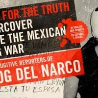 Élni akar a mexikói drogháború sztárbloggere