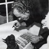 Bukowski imádta a dorombolást, de a cenzorokat nagyon sajnálta