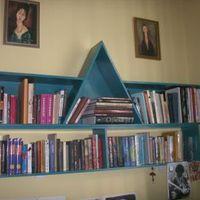Kezdő könyvmániás 163 kötettel