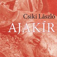 Egy utolsó regény