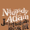 Nádasdy Ádám bizalmas felismeréseket oszt meg velünk új verseiben