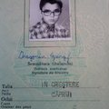 Dragomán 29 éve  költözött egy durva diktatúrából egy szabadabbnak gondolt országba