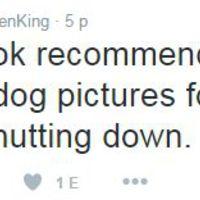 Stephen King bezárja Twitterét Trump győzelme miatt