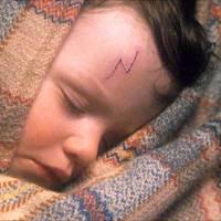 Twist Oliver, Anne Shirley, Harry Potter – A világirodalom leghíresebb árvái