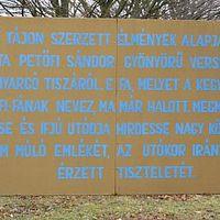 A fa, amely látta Petőfi Sándort
