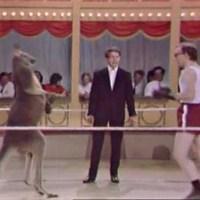 Woody Allen egy kenguruval öklözik