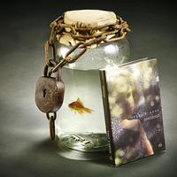 Libri-díj: Tíz könyv verseng az olvasók szavazataiért