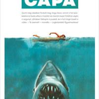 Long Island partjainál egy emberevő cápa szedi áldozatait
