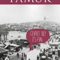 Pamuk első regénye A Buddenbrook ház török változata