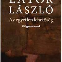 Az évtized legjobb magyar könyvei [30-21]