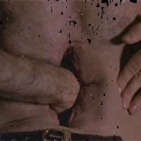 Szép és gondtalan orgia - David Cronenberg és a biohorror