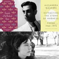 Nincs magyar a Best Translated Book Award díjazottjai között