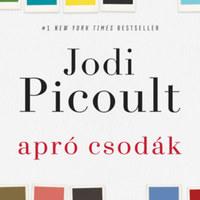 Picoult új regényében a faji felsőbbrendűség hirdetése először zavart, majd halált okoz