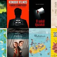 13 könyv a hullámzó Balatonról