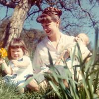 Sylvia Plath: Daddy (három magyar fordításban)