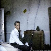 Ismeretlen fotók és film Salingerről