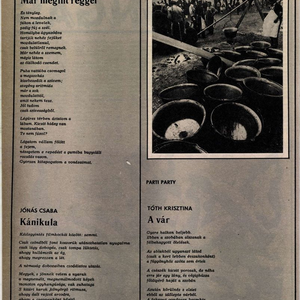 Ez volt Tóth Krisztina első publikációja!