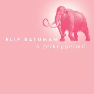 Batuman regényéből kiderül, milyen a magyar valóság külföldi szemmel