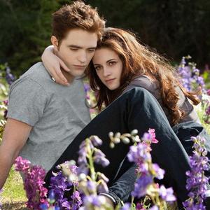 A csillogó vámpírfiútól a vérszívó magzatig – Tíz éve ért véget a Twilight