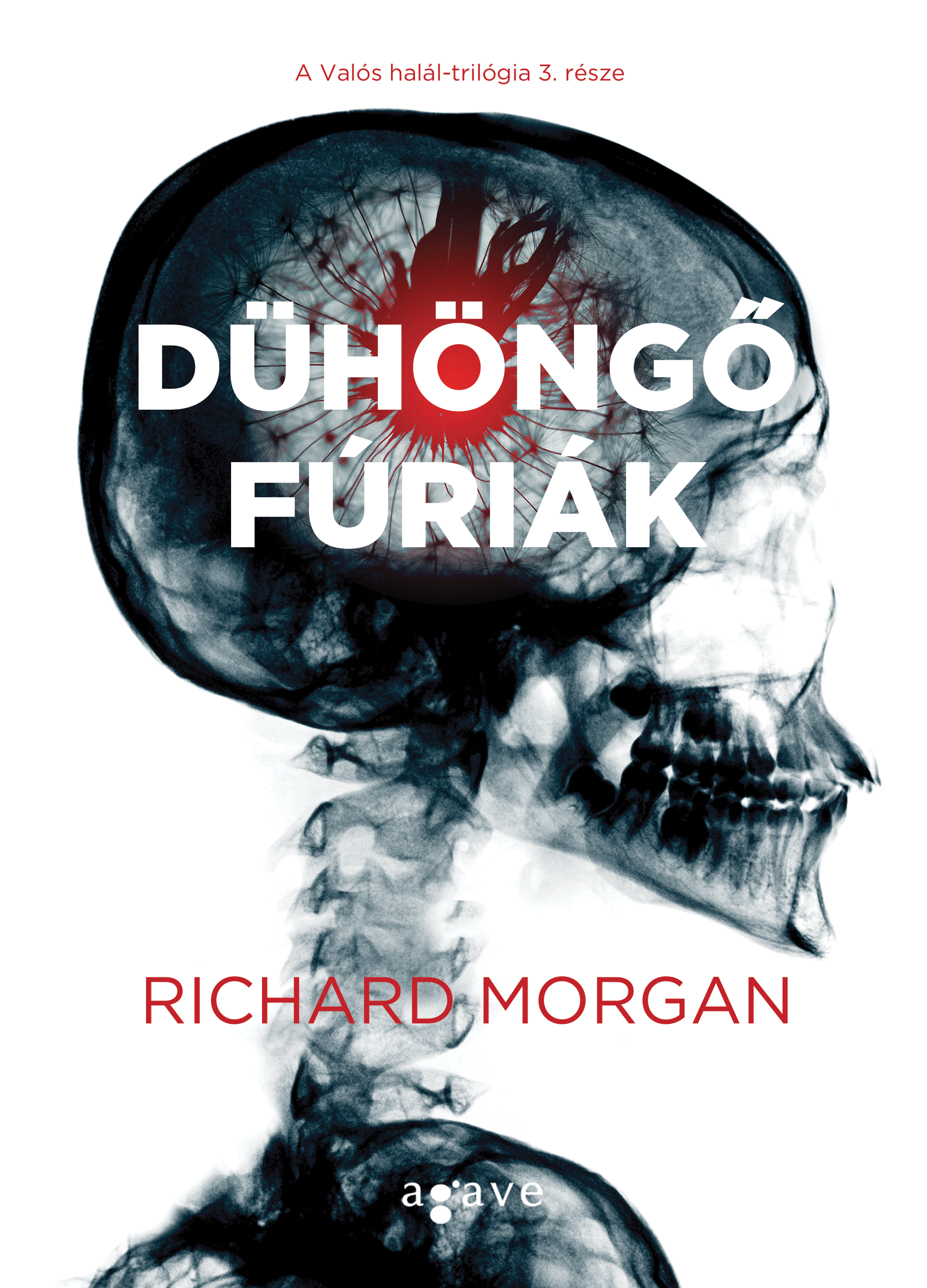 richard_morgan_duhongo_furiak_b1.png