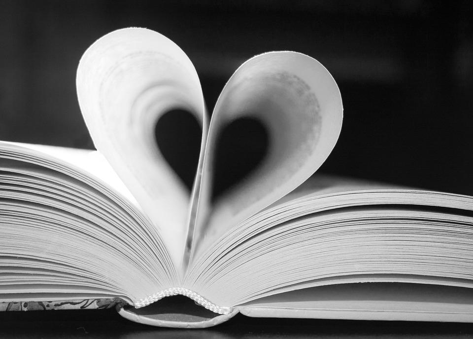 book-623163_960_720.jpg