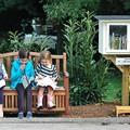 35+1 eszméletlenül kreatív Little Free Library