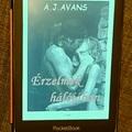 A. J. Avans: Érzelmek hálójában (Szenvedélyek viharában 2.)