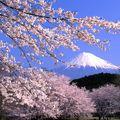 Írók, gasztronómiai, turisztikai attrakciók - Felfedezőúton Japánban I.