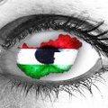 Állam vagy kormányzat? Az Orbán-kormány felfogásáról