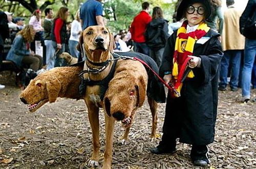 harry-potter-cerberus-family-costume.jpg