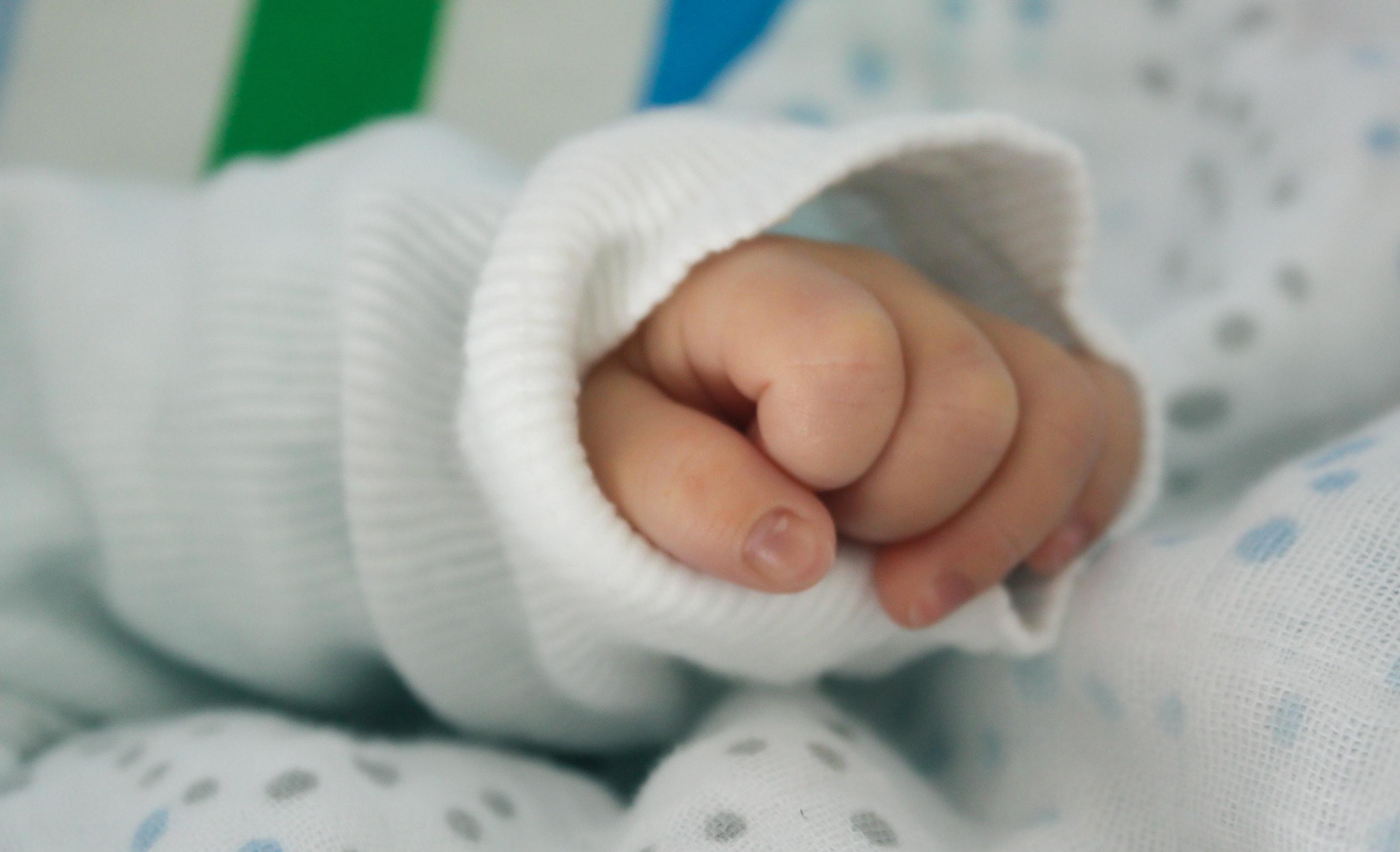baby-child-fingers-15988.jpg