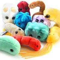 Plüss mikróbák