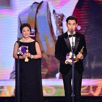 A KBS és az SBS Drama Awards díjazottjai 2015.12.31.