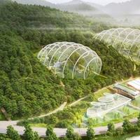 Dübörgő gazdaság kontra környezetvédelem