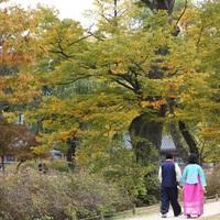 Lassan élni a rohanó világban, koreai módra