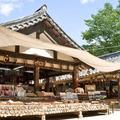 Yongin - Korean Folk Village