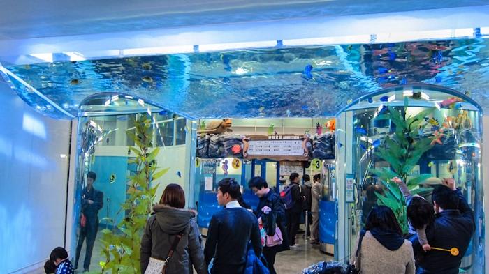 10_a_coex_aquarium_700x393.jpg