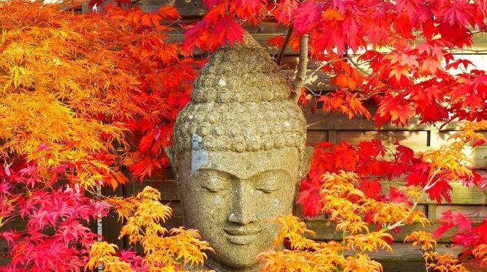 3_buddha-2505791_960_720_2_700x392.jpg