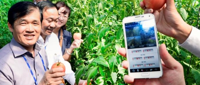 smart_farming_borito.png