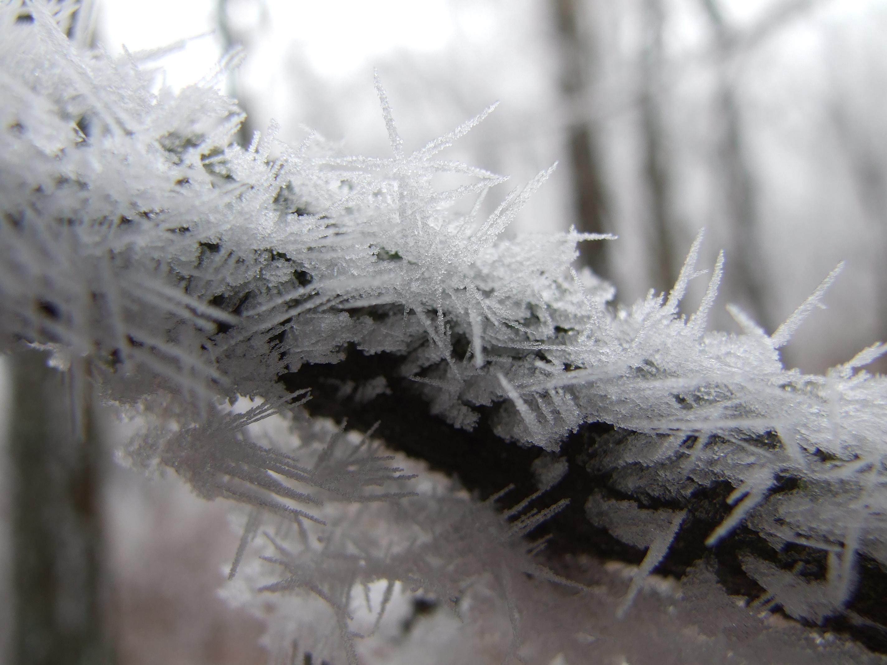 Emergenciák jégből