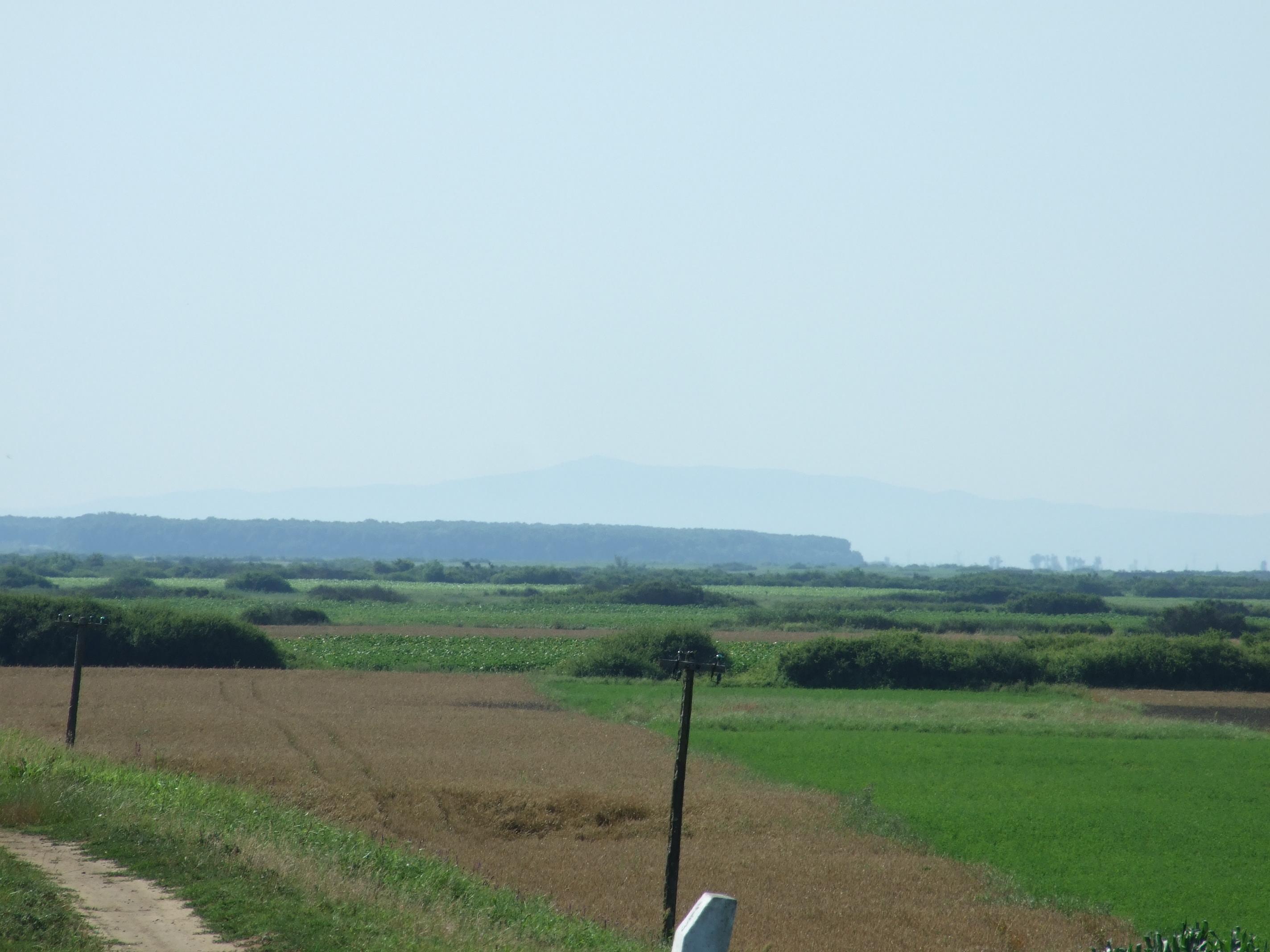 Távolban a Zárándi hegység ormai kéklenek.