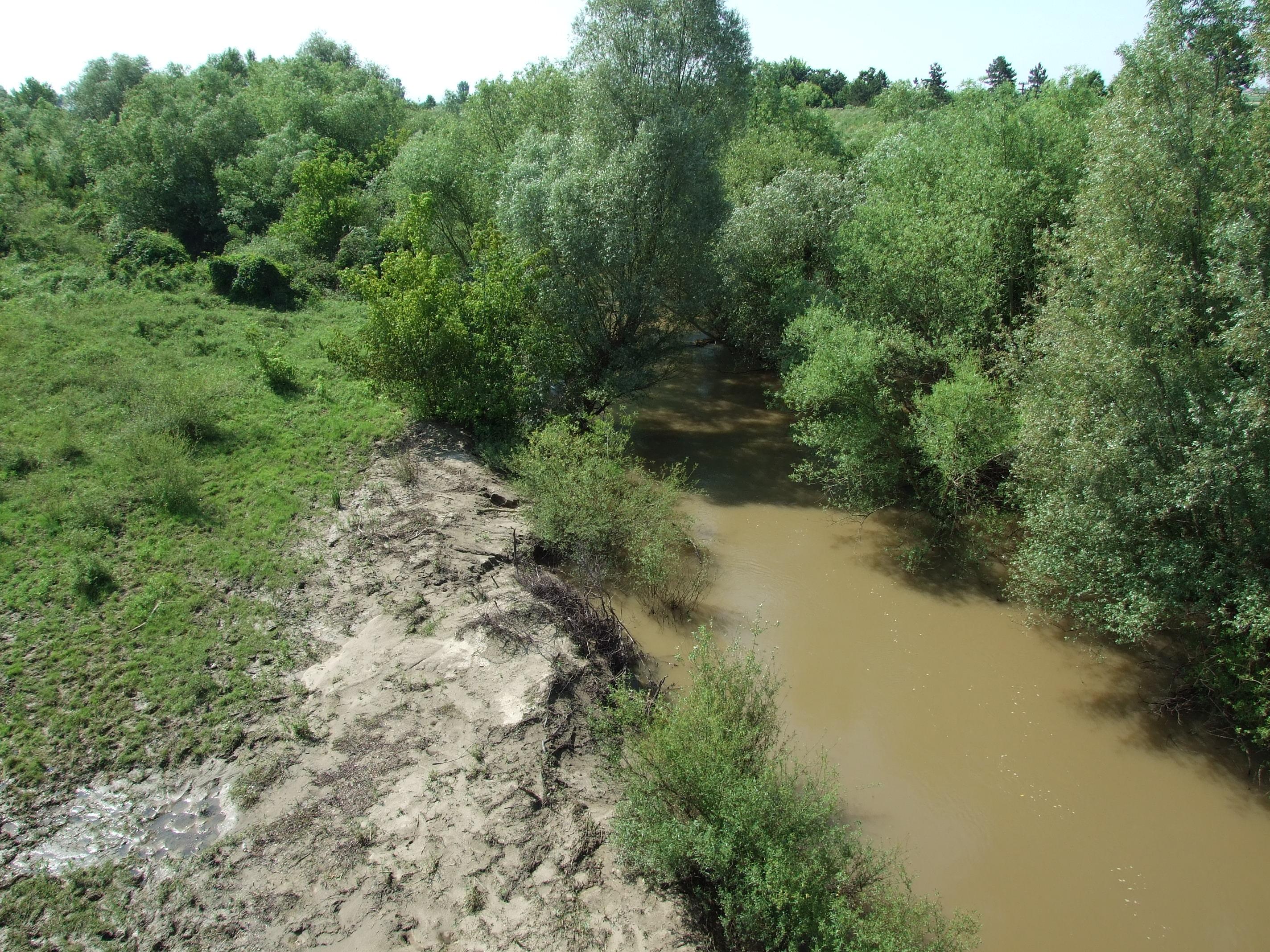 Minnél beljebb mentem Romániában annál inkább kezdett patak jellege lenni a körösnek.