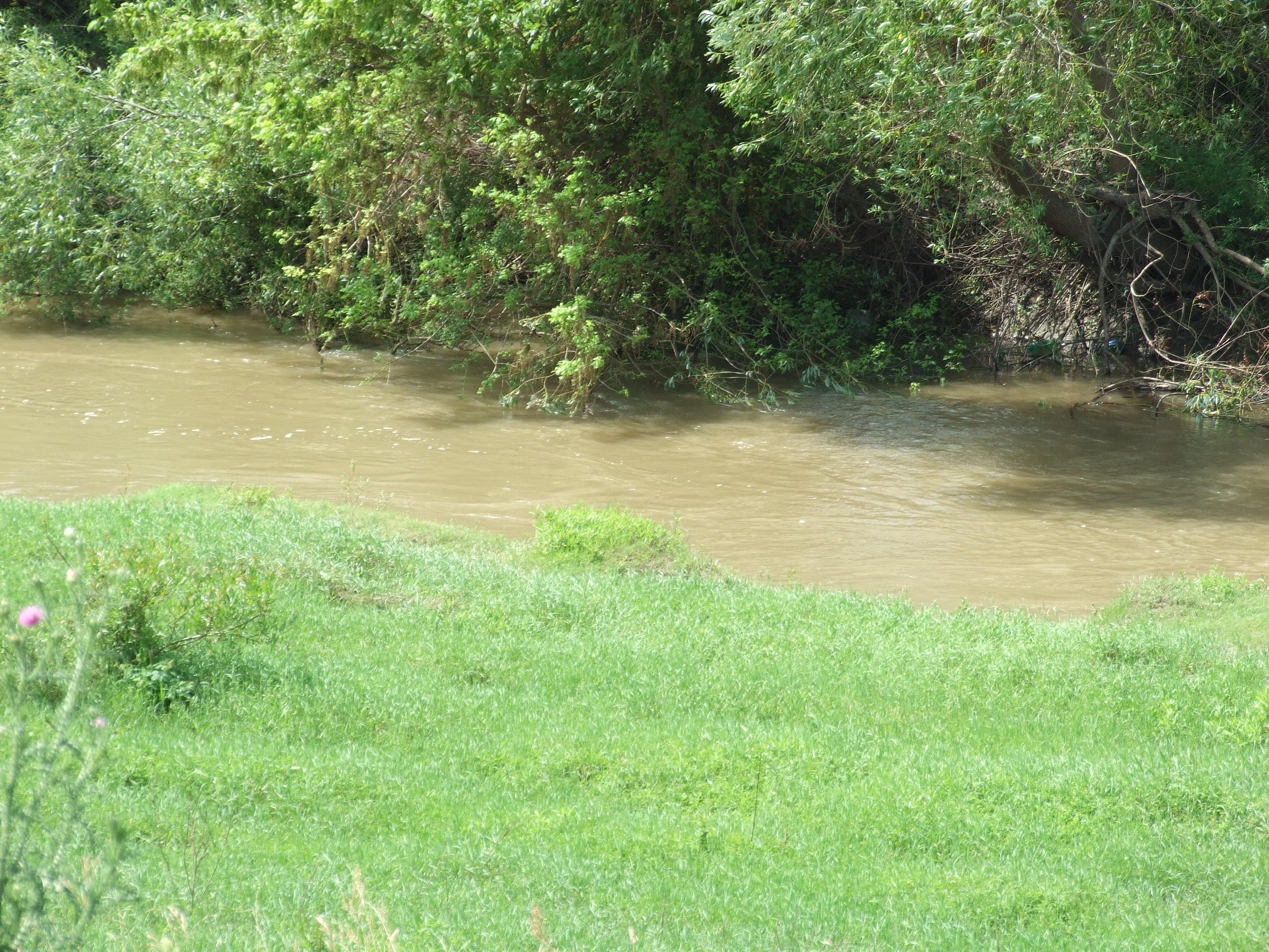Itt már, bár áradt a folyó, kezd patakká alakulni