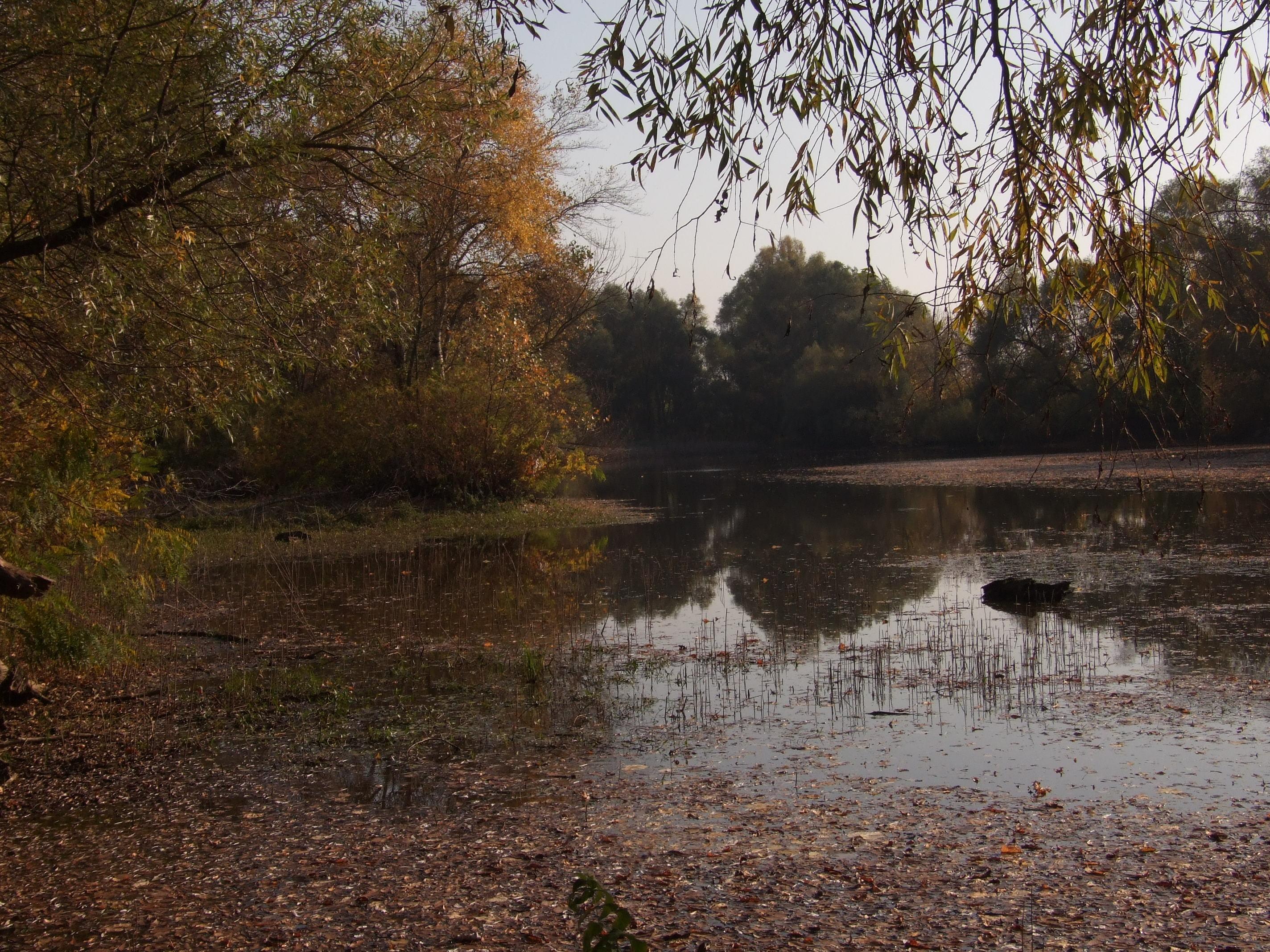 A Borbély -Zug ősszel. kapitális csukák rejteke