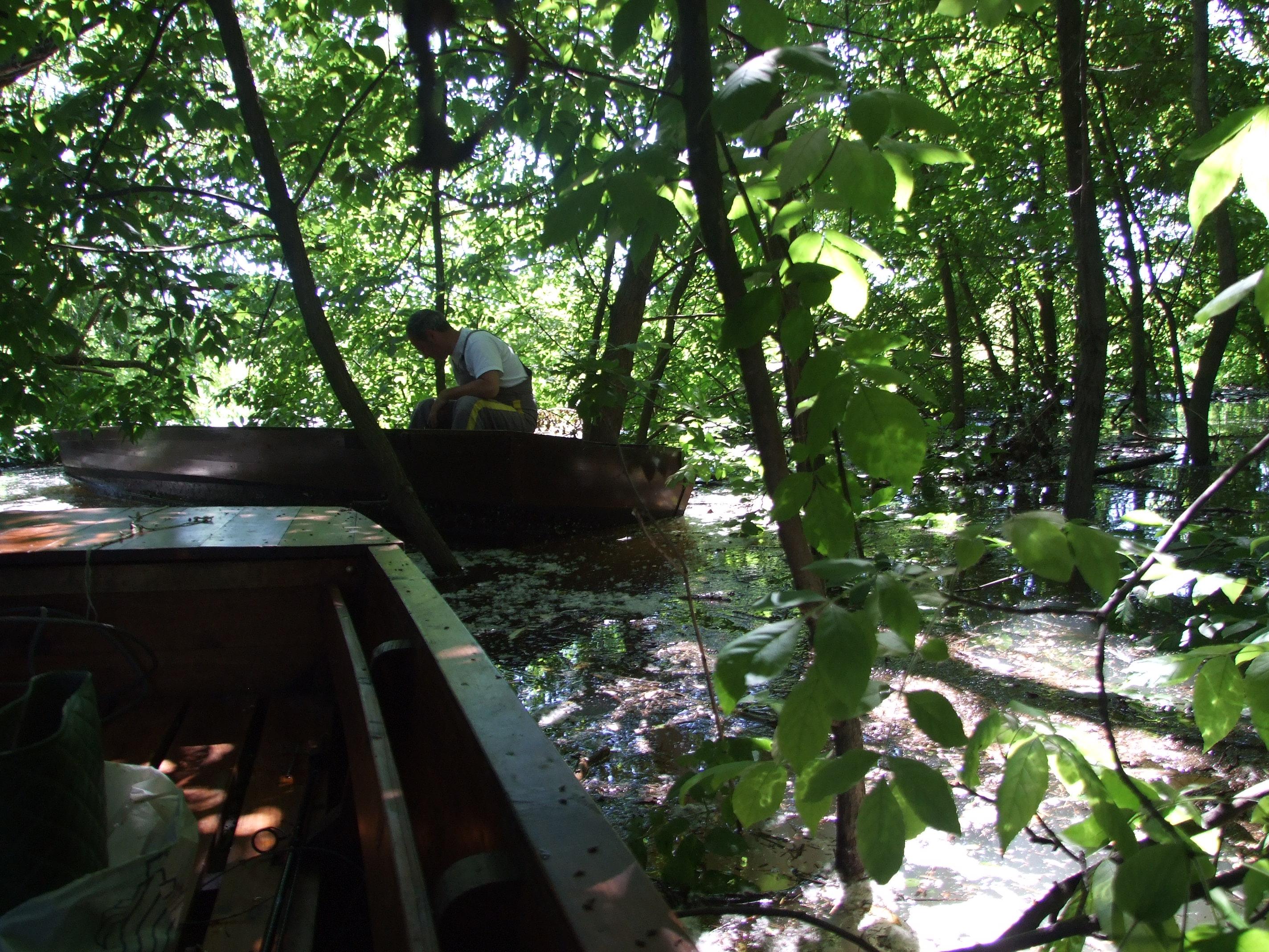 Csónakkal az ártérben
