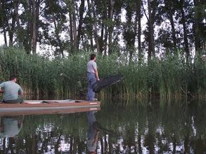 A gyérítés leghatékonyabb eszköze és módja az ivadék leszedés.<br />( fotó: Bogdány Zoltán)
