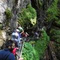 Körösvidék barlangjai - Aranyosfői (Szkerisórai)-jégbarlang (Ghetarul de la Scárisoara)