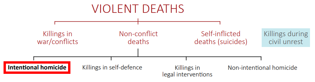 unodc_definition_of_homicide.png